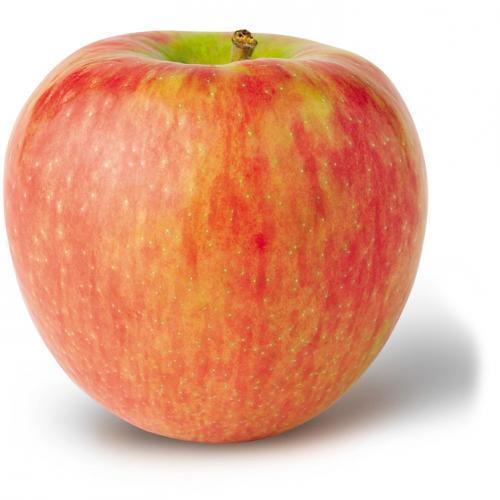 Apples Honeycrisp – Demarest Farms